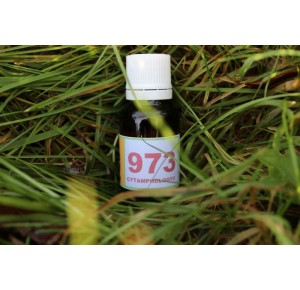 973 Trachéo-bronchite