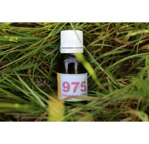 975 Hypo-thyroïdie (1)
