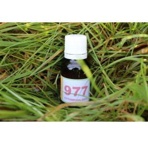977 Hypo-thyroïdie (2)